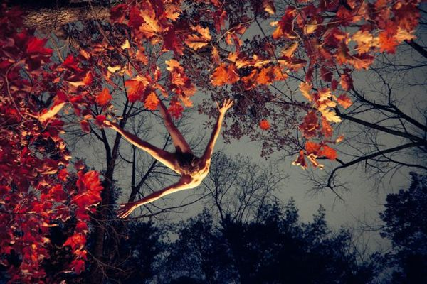 RM_red_leaves_jump_72x108